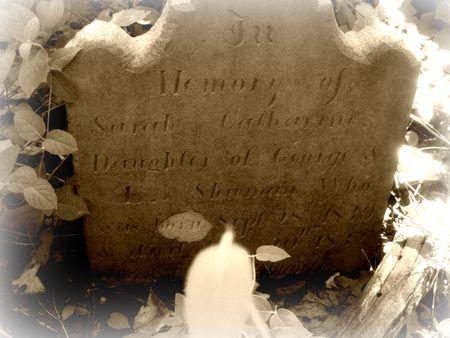 Sarah Catharine Shuman's gravestone