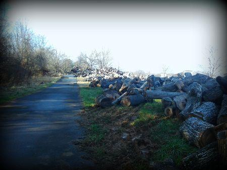 2012-01-01 logs path